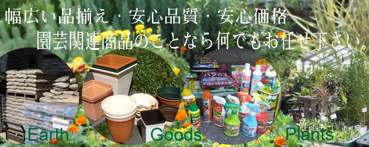 素敵な発見がたくさん! 園芸ショップ探訪4 大阪 …
